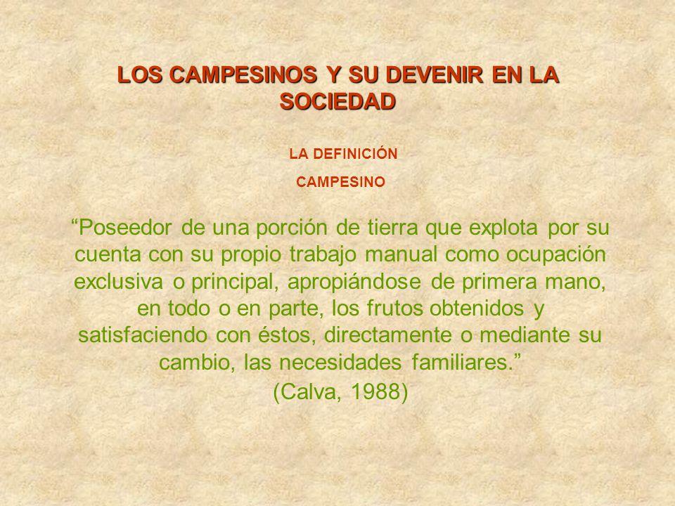 LOS CAMPESINOS Y SU DEVENIR EN LA SOCIEDAD