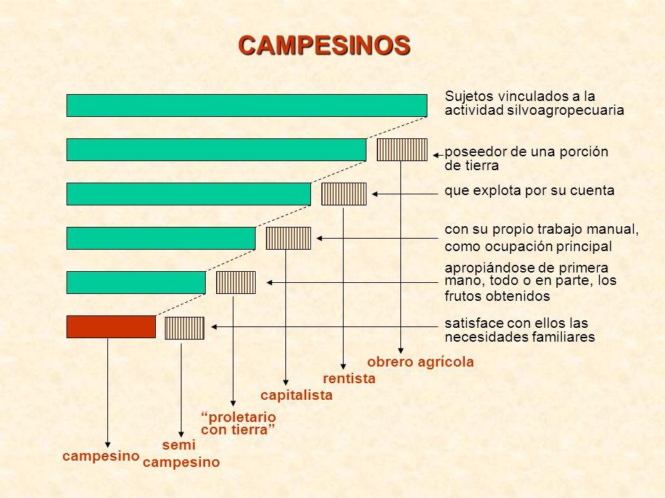 CAMPESINOS Sujetos vinculados a la actividad silvoagropecuaria