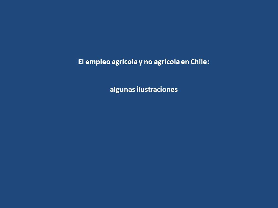 El empleo agrícola y no agrícola en Chile: algunas ilustraciones
