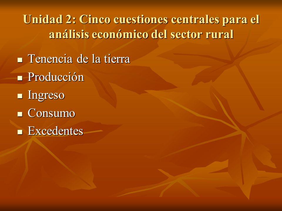 Unidad 2: Cinco cuestiones centrales para el análisis económico del sector rural