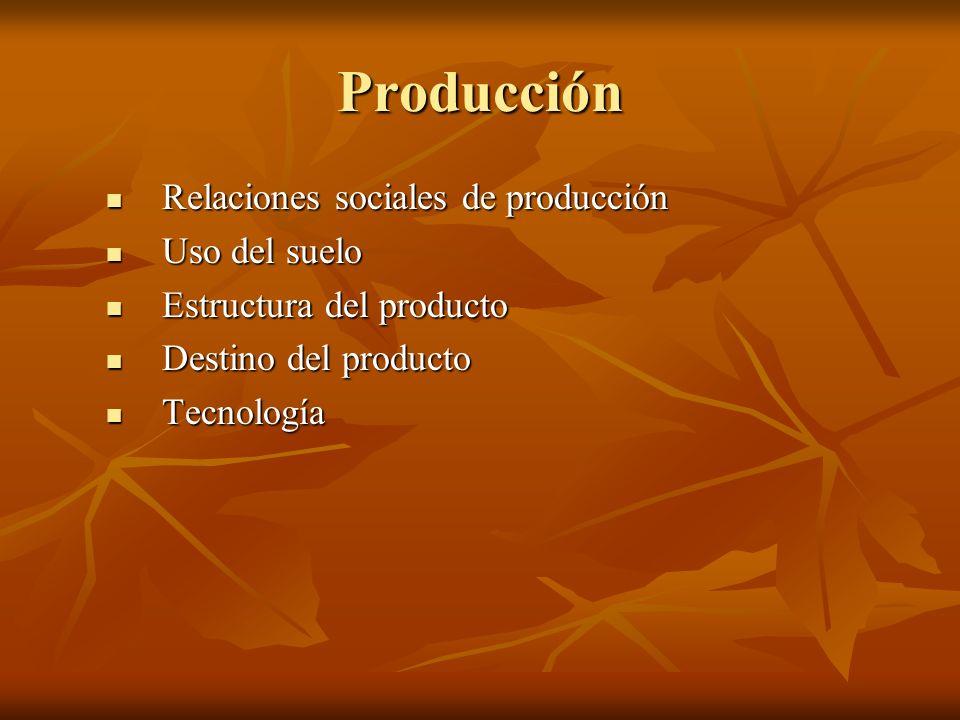 Producción Relaciones sociales de producción Uso del suelo