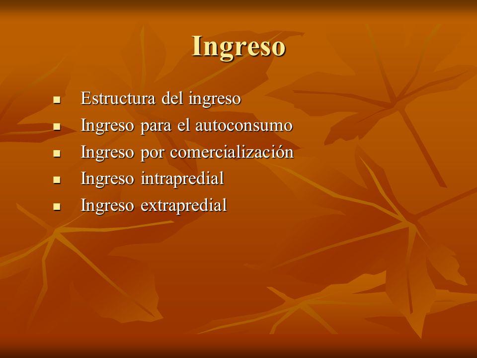 Ingreso Estructura del ingreso Ingreso para el autoconsumo