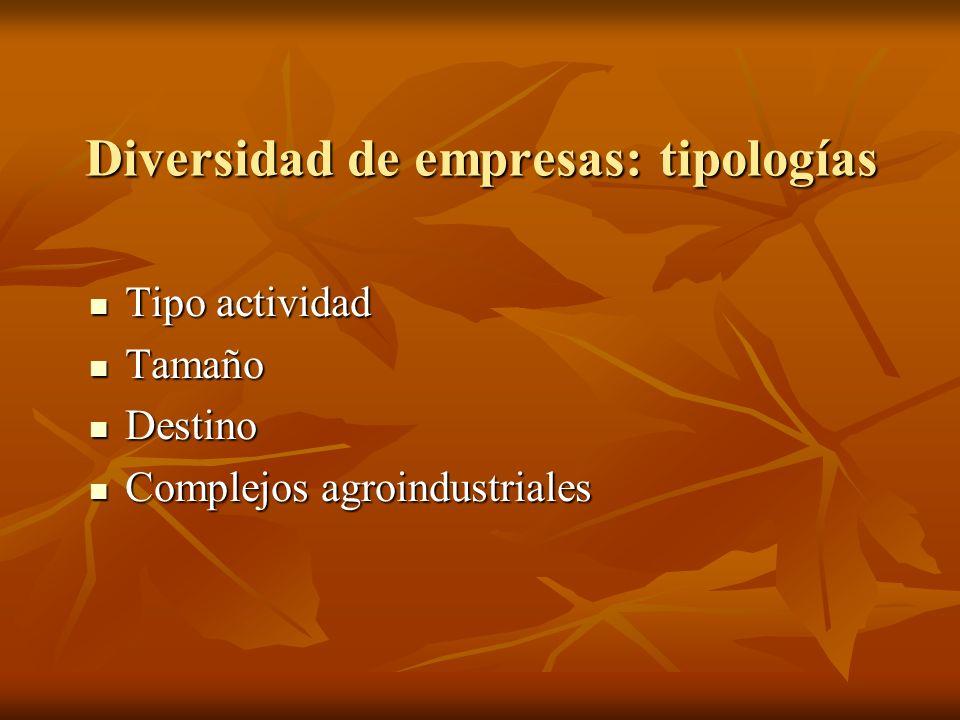Diversidad de empresas: tipologías