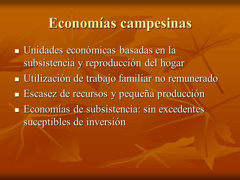 Economías campesinasUnidades económicas basadas en la subsistencia y reproducción del hogar. Utilización de trabajo familiar no remunerado.