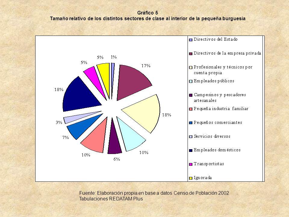 Gráfico 5 Tamaño relativo de los distintos sectores de clase al interior de la pequeña burguesía.
