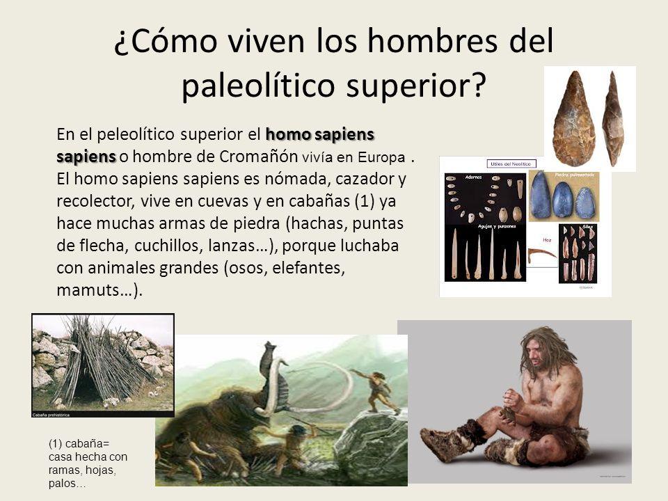 ¿Cómo viven los hombres del paleolítico superior