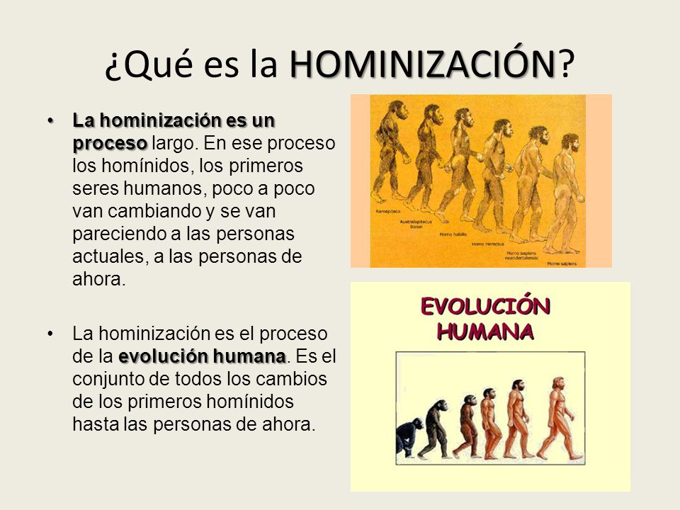 ¿Qué es la HOMINIZACIÓN