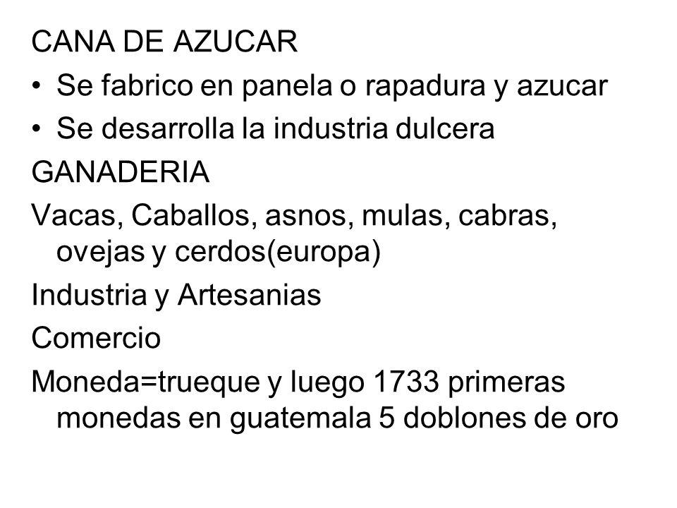 CANA DE AZUCAR Se fabrico en panela o rapadura y azucar. Se desarrolla la industria dulcera. GANADERIA.