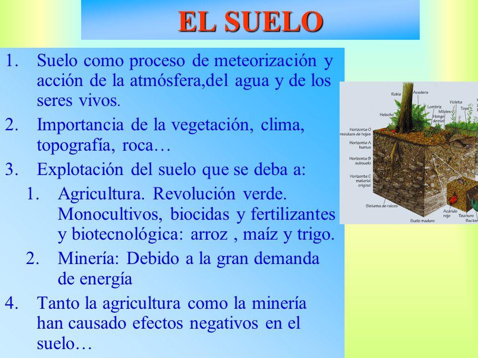 EL SUELO Suelo como proceso de meteorización y acción de la atmósfera,del agua y de los seres vivos.