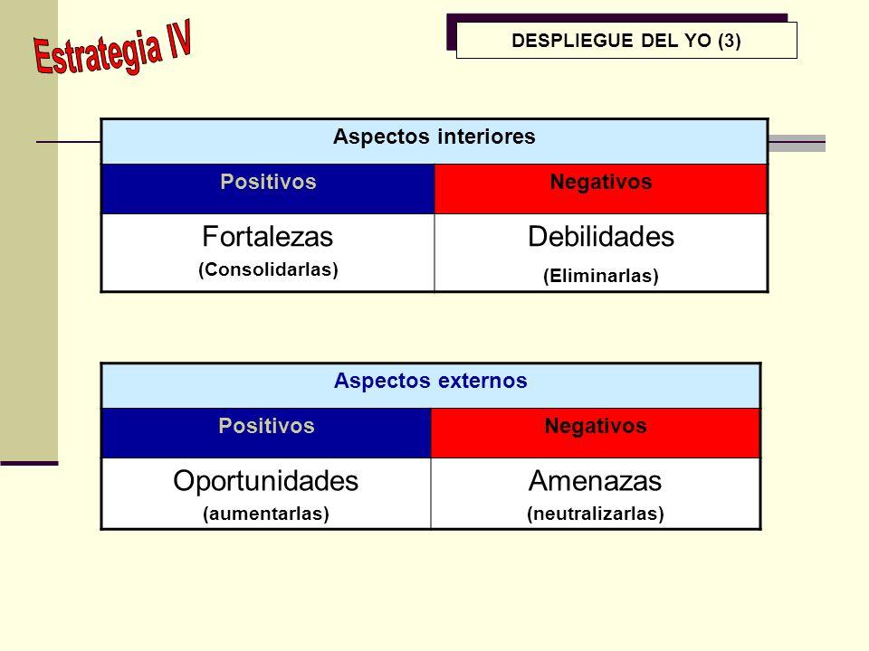 Fortalezas Debilidades Oportunidades Amenazas Estrategia IV