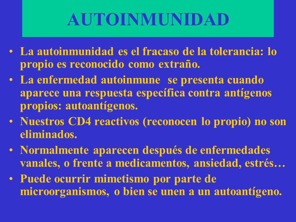 AUTOINMUNIDAD La autoinmunidad es el fracaso de la tolerancia: lo propio es reconocido como extraño.