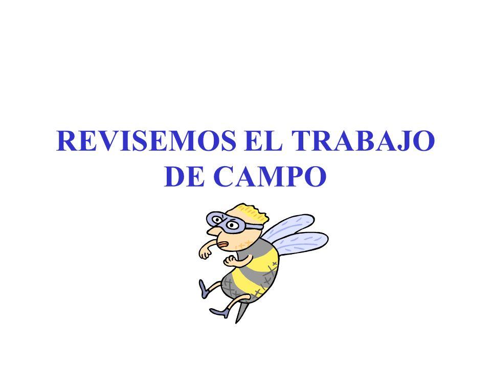 REVISEMOS EL TRABAJO DE CAMPO