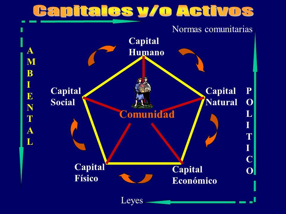 Capitales y/o Activos Comunidad Normas comunitarias Capital Humano