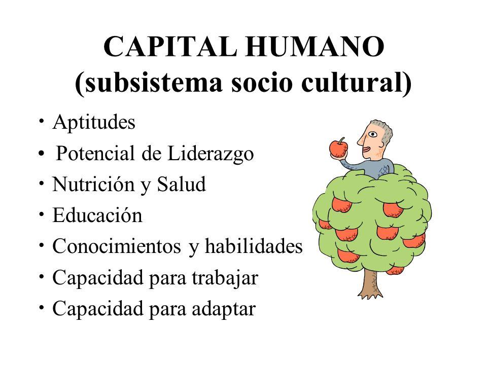 CAPITAL HUMANO (subsistema socio cultural)