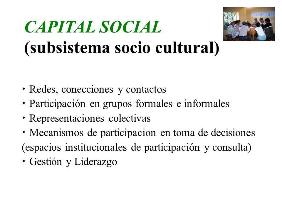 (subsistema socio cultural)