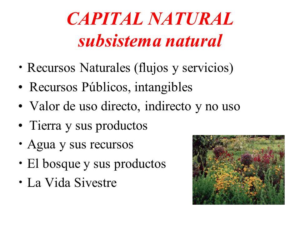 CAPITAL NATURAL subsistema natural