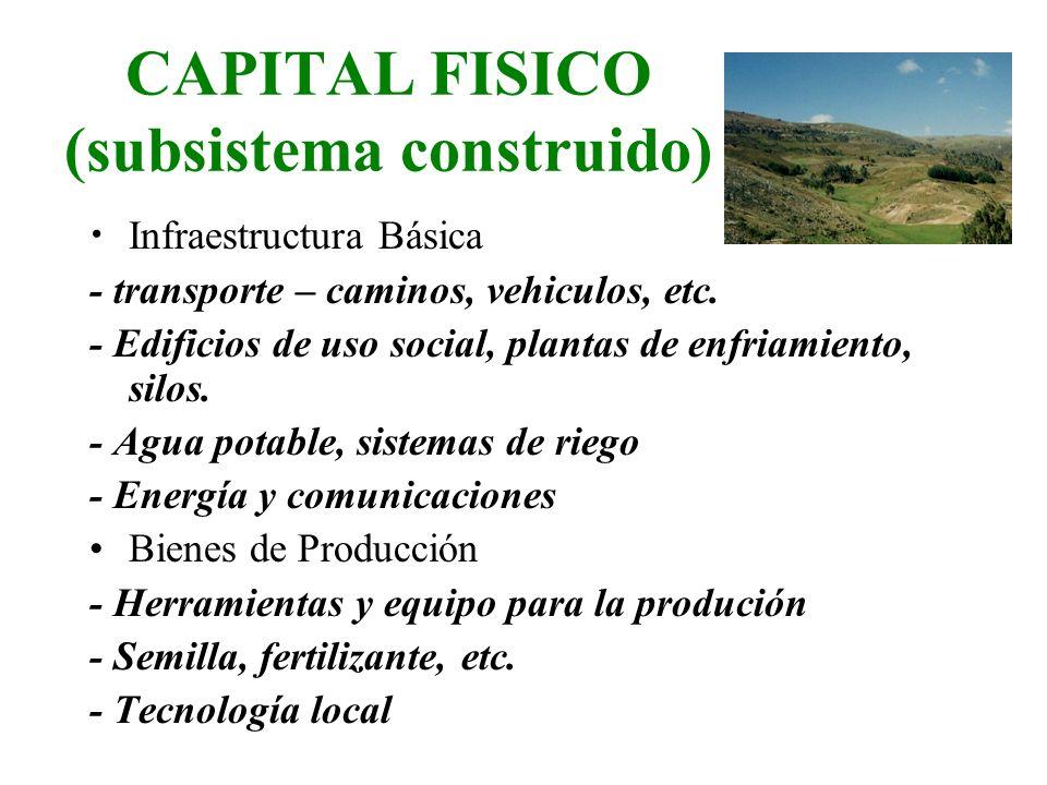 CAPITAL FISICO (subsistema construido)