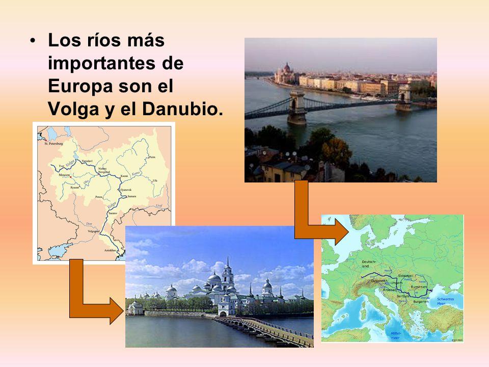 Los ríos más importantes de Europa son el Volga y el Danubio.