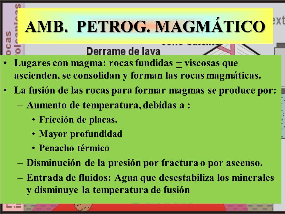 AMB. PETROG. MAGMÁTICO Lugares con magma: rocas fundidas + viscosas que ascienden, se consolidan y forman las rocas magmáticas.