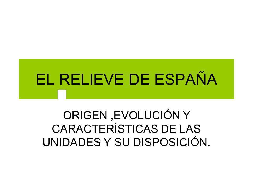 ORIGEN ,EVOLUCIÓN Y CARACTERÍSTICAS DE LAS UNIDADES Y SU DISPOSICIÓN.