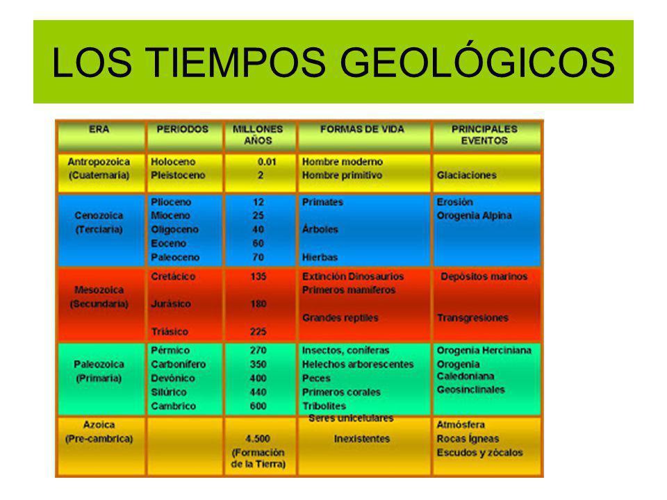 LOS TIEMPOS GEOLÓGICOS
