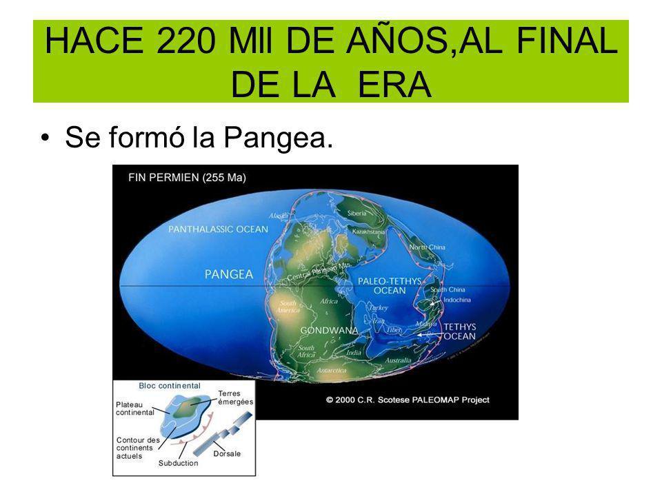 HACE 220 Mll DE AÑOS,AL FINAL DE LA ERA