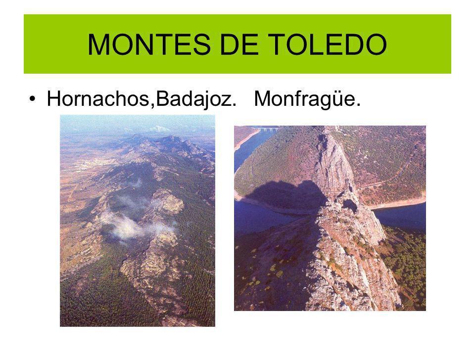 MONTES DE TOLEDO Hornachos,Badajoz. Monfragüe.