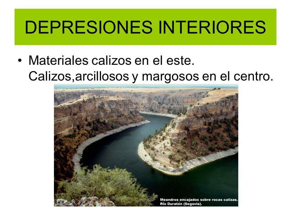 DEPRESIONES INTERIORES