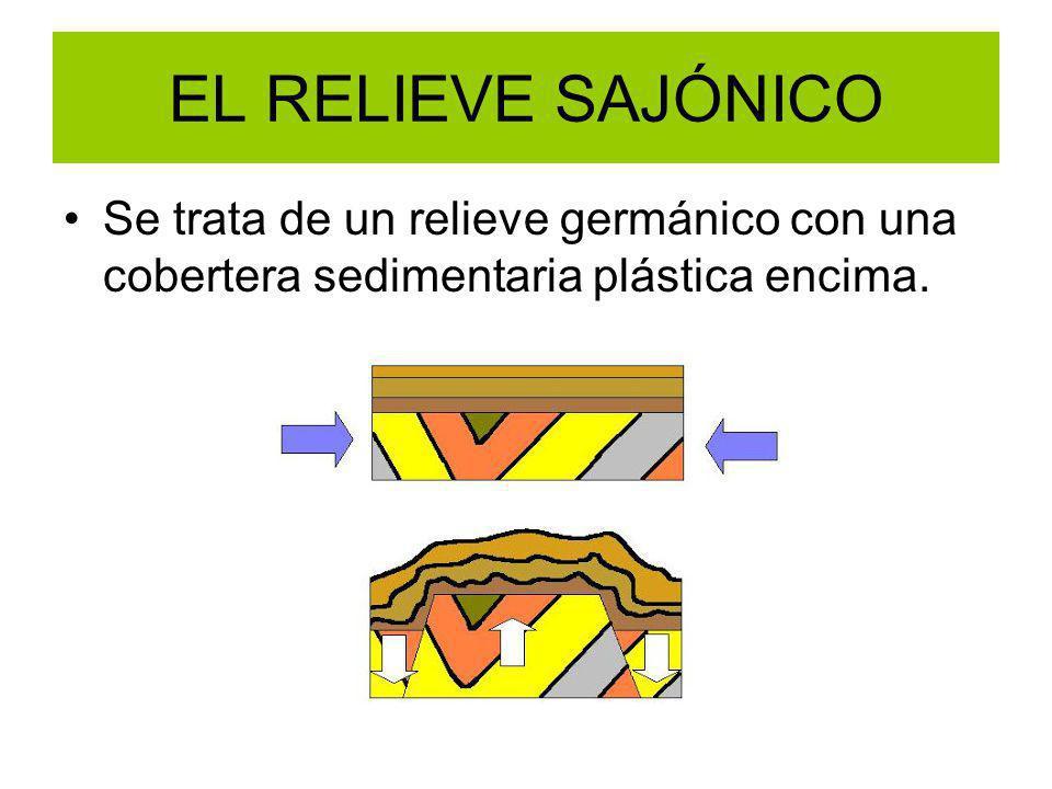 EL RELIEVE SAJÓNICO Se trata de un relieve germánico con una cobertera sedimentaria plástica encima.