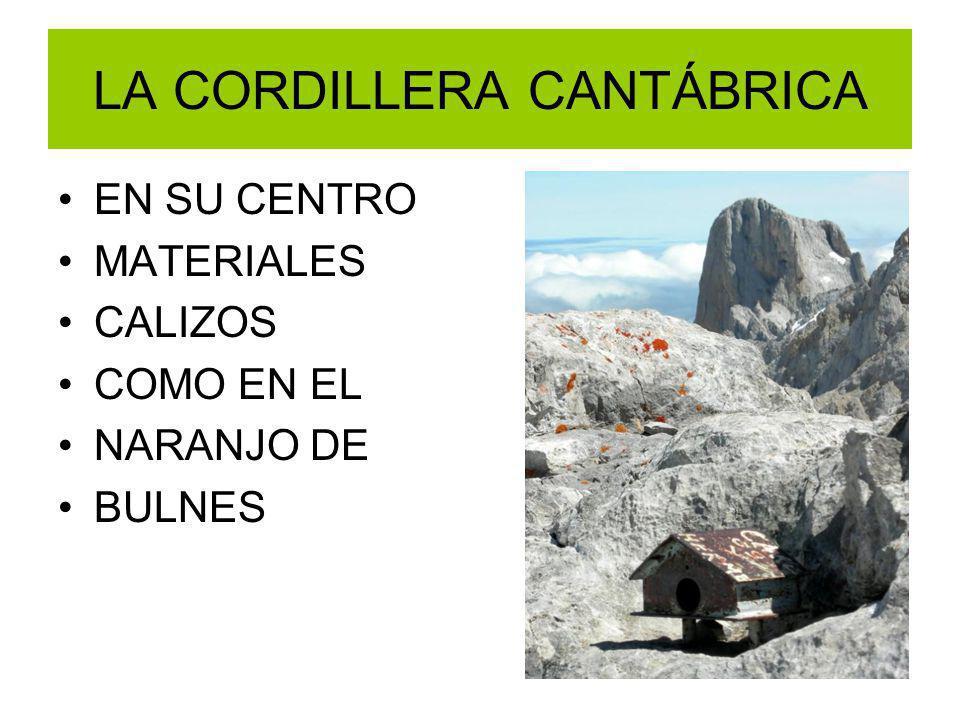 LA CORDILLERA CANTÁBRICA