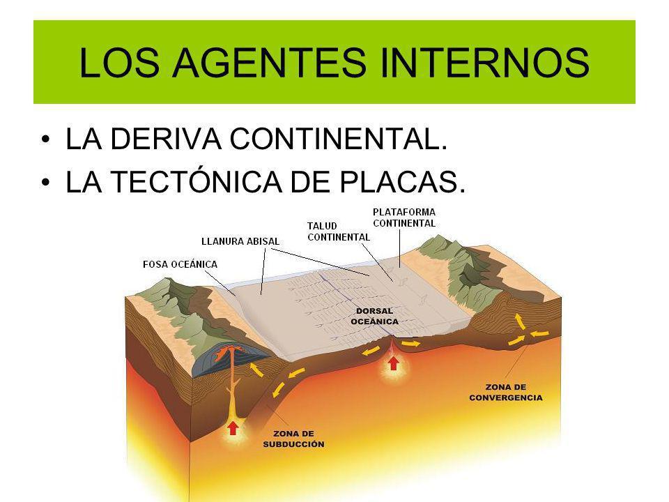 LOS AGENTES INTERNOS LA DERIVA CONTINENTAL. LA TECTÓNICA DE PLACAS.