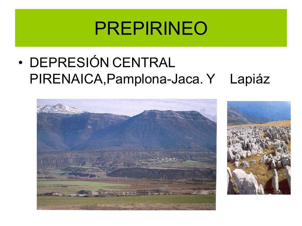 PREPIRINEO DEPRESIÓN CENTRAL PIRENAICA,Pamplona-Jaca. Y Lapiáz