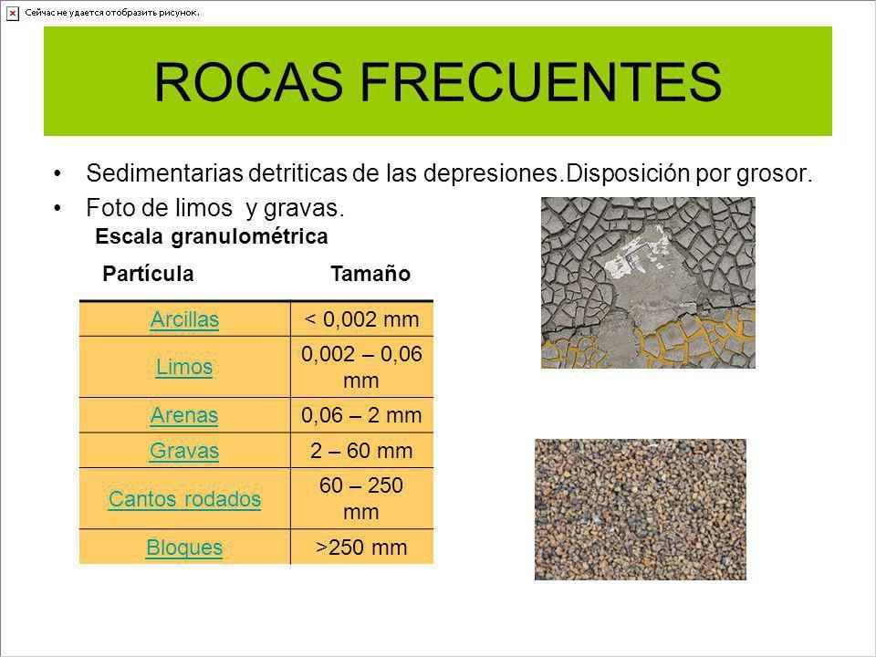 ROCAS FRECUENTES Sedimentarias detriticas de las depresiones.Disposición por grosor. Foto de limos y gravas.