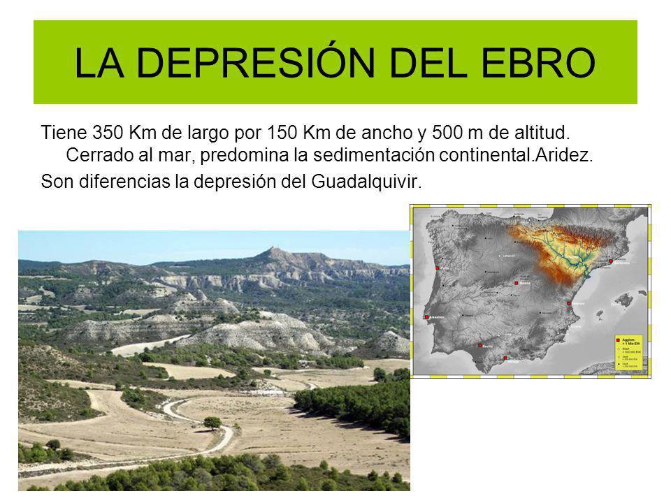 LA DEPRESIÓN DEL EBRO Tiene 350 Km de largo por 150 Km de ancho y 500 m de altitud. Cerrado al mar, predomina la sedimentación continental.Aridez.