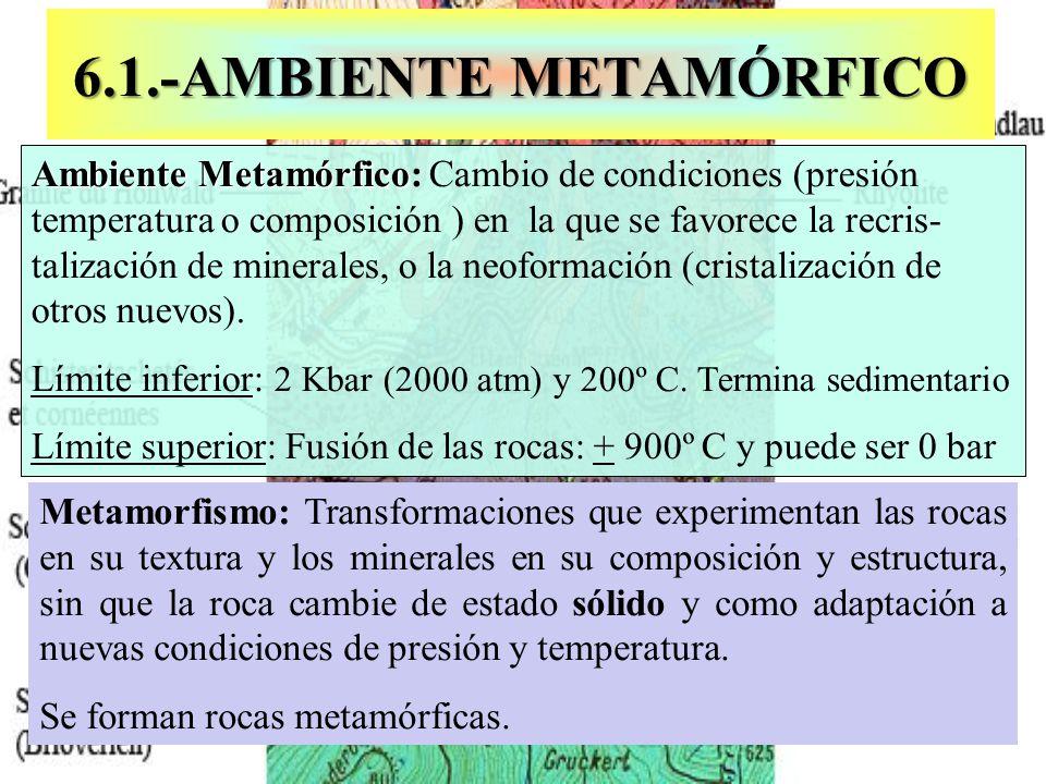 6.1.-AMBIENTE METAMÓRFICO