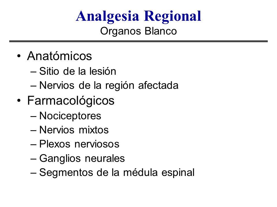 Analgesia Regional Organos Blanco
