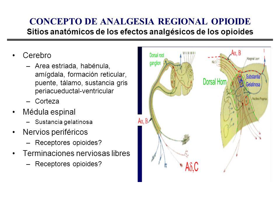 CONCEPTO DE ANALGESIA REGIONAL OPIOIDE Sitios anatómicos de los efectos analgésicos de los opioides