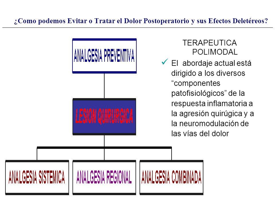 TERAPEUTICA POLIMODAL