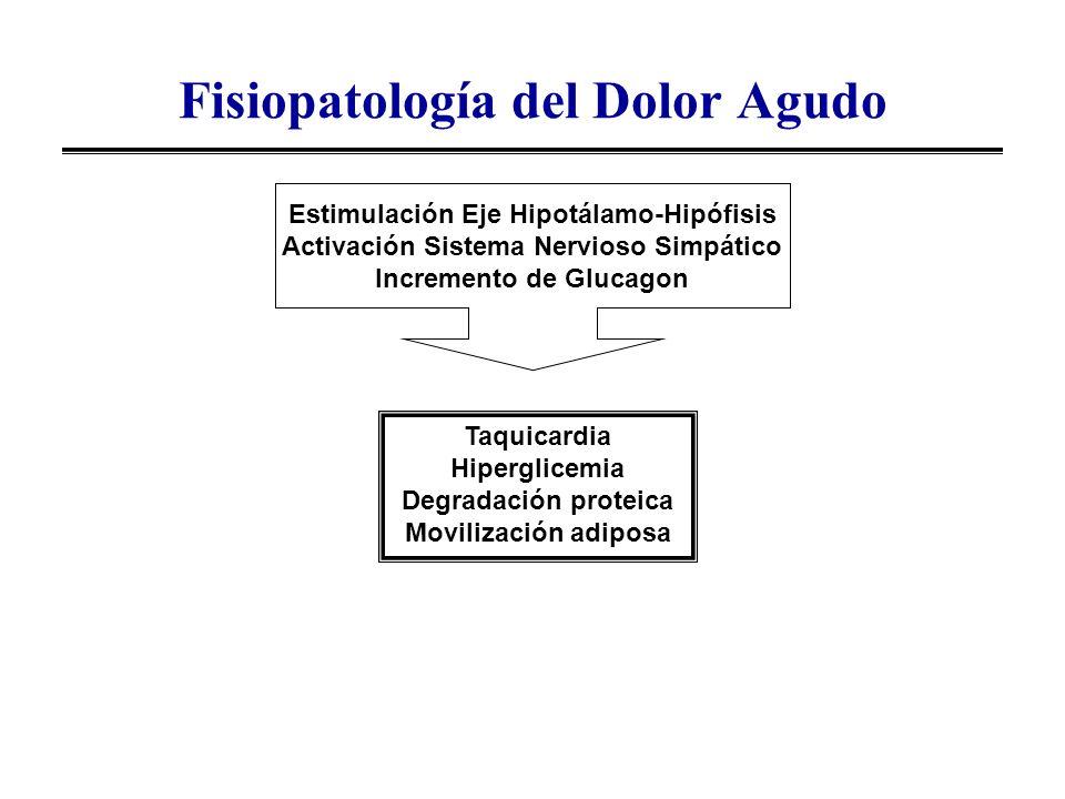 Fisiopatología del Dolor Agudo
