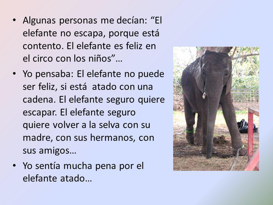Algunas personas me decían: El elefante no escapa, porque está contento. El elefante es feliz en el circo con los niños …