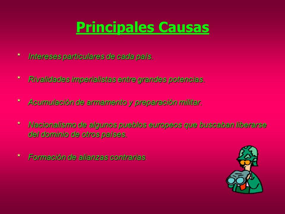 Principales Causas Intereses particulares de cada país.