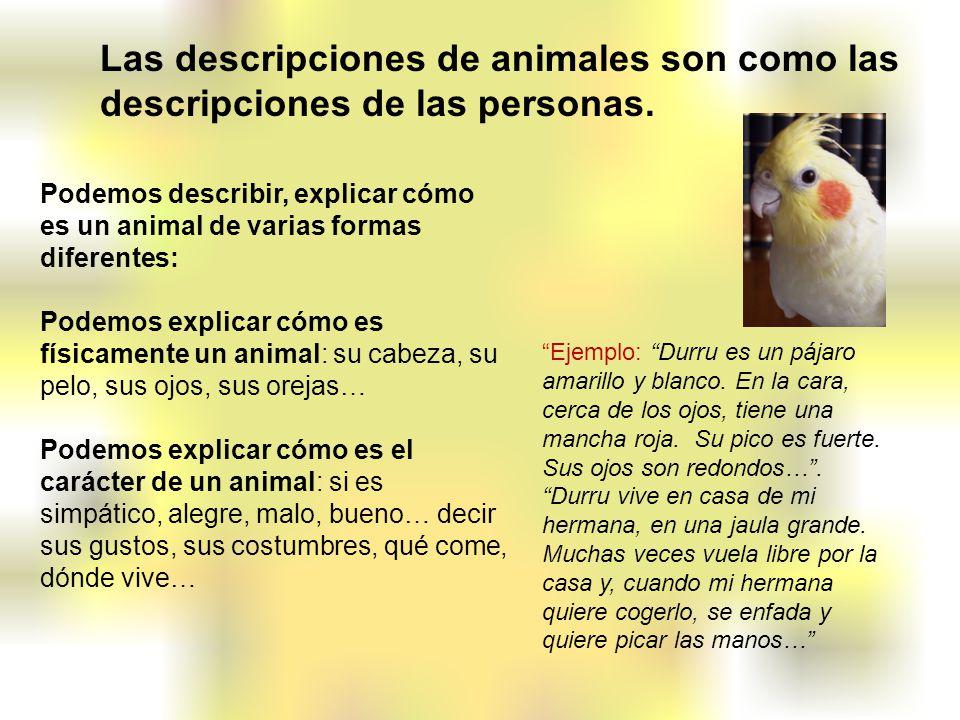 Las descripciones de animales son como las descripciones de las personas.