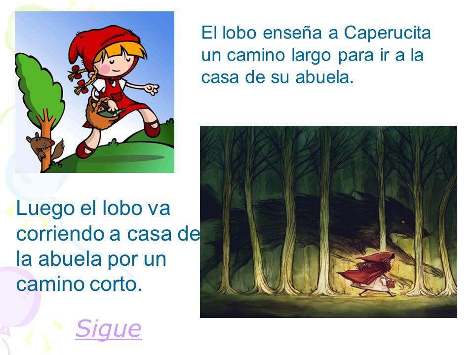 El lobo enseña a Caperucita un camino largo para ir a la casa de su abuela.