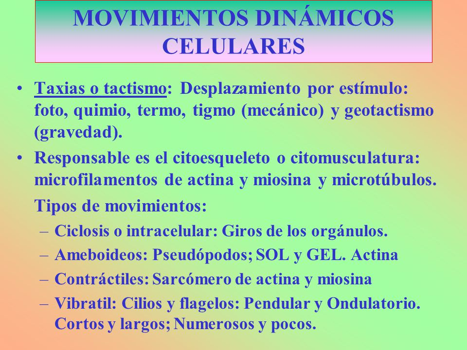 MOVIMIENTOS DINÁMICOS CELULARES