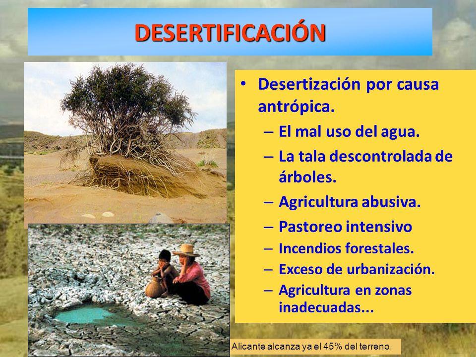 DESERTIFICACIÓN Desertización por causa antrópica.