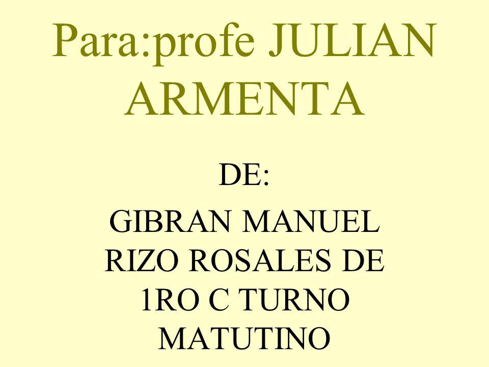 Para:profe JULIAN ARMENTA