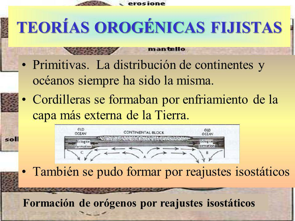 TEORÍAS OROGÉNICAS FIJISTAS