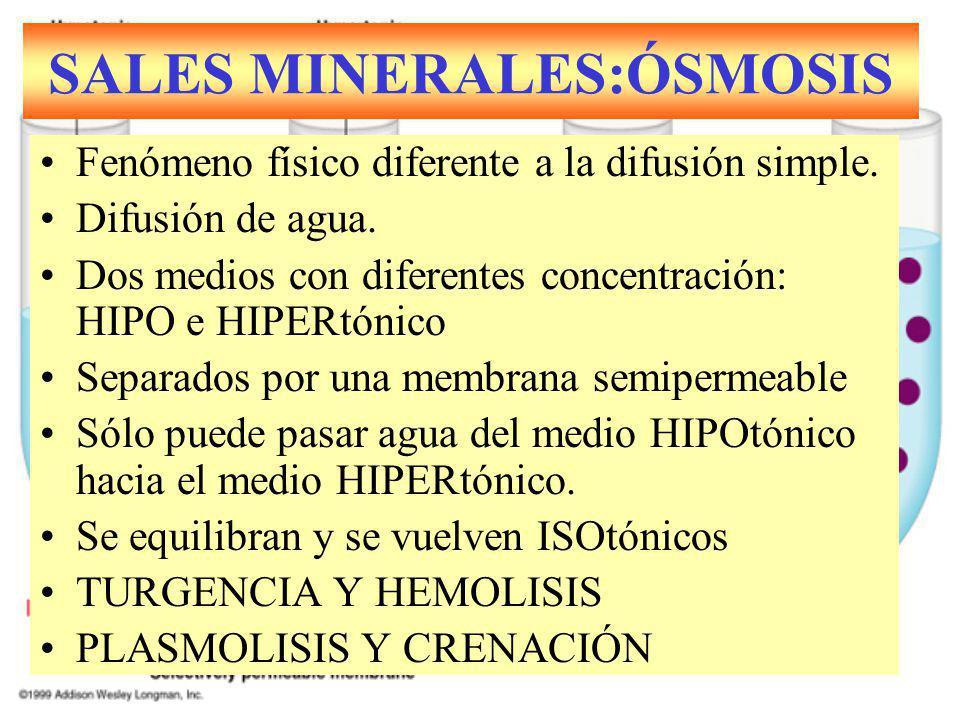 SALES MINERALES:ÓSMOSIS