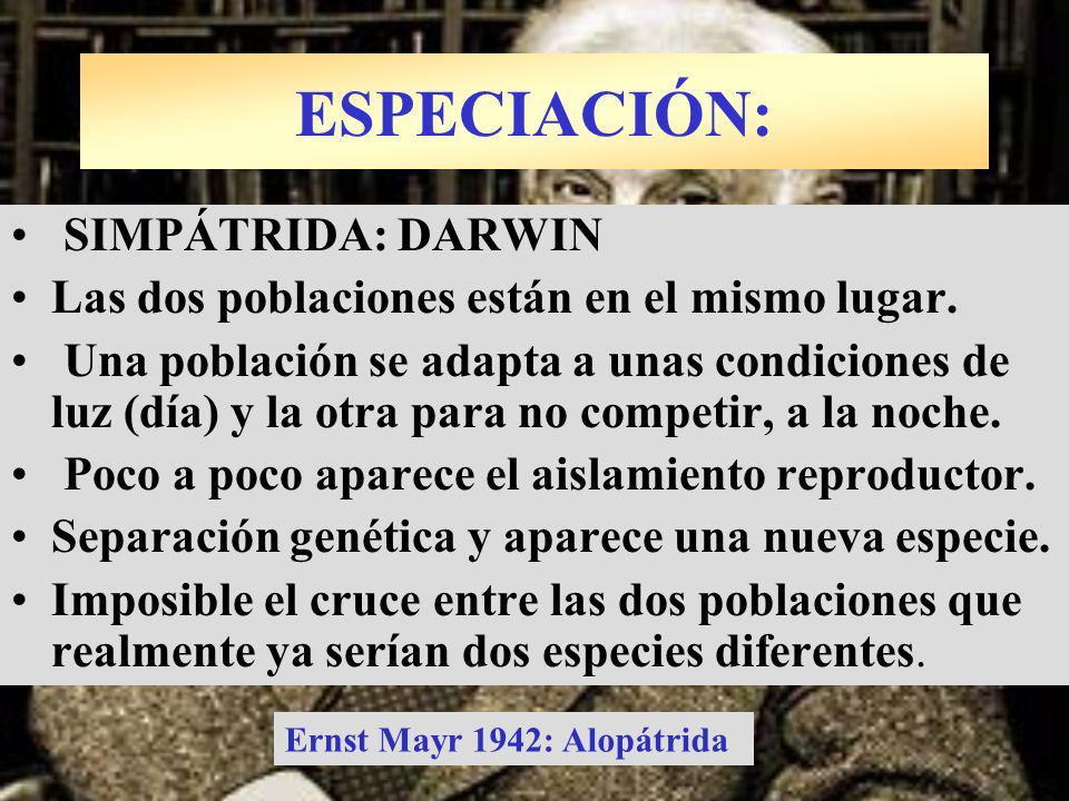 ESPECIACIÓN: SIMPÁTRIDA: DARWIN