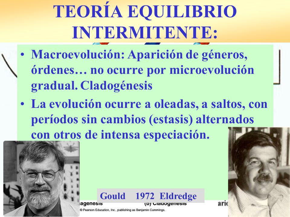 TEORÍA EQUILIBRIO INTERMITENTE: